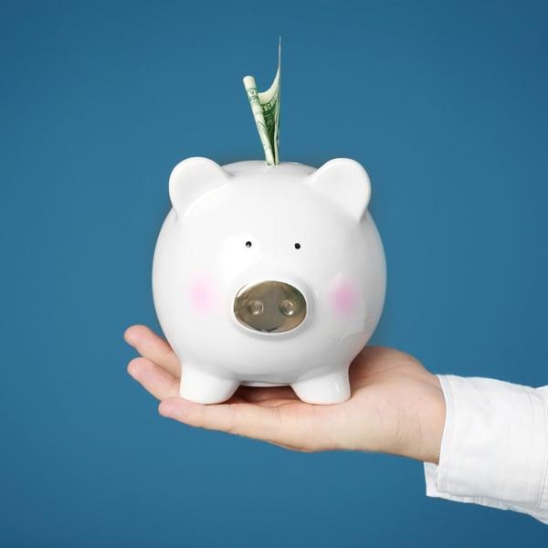 Max-Income-Tips-Piggy-Bank
